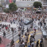 Shibuya Crossing craziness